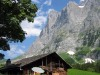 Grindelwald (10)
