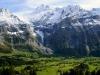 Grindelwald (6)