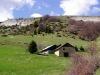Plateau-et-hameau-de-Sornin