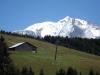 Mont_Arbois (100)