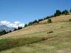 Mont_Arbois (112)