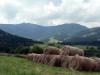 Mont_Arbois (26)
