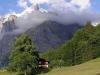 Grindelwald-14