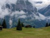 Grindelwald-9