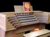Hoffkichter-organ