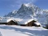 Grindelwald (11)