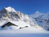 Grindelwald (13)