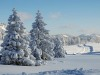 paysage-hiver (4)