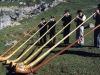 cor-des-alpes-chatel