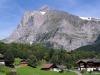 Grindelwald (17)