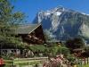 Grindelwald (4)