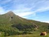 Grindelwald-Kleine-Scheidegg